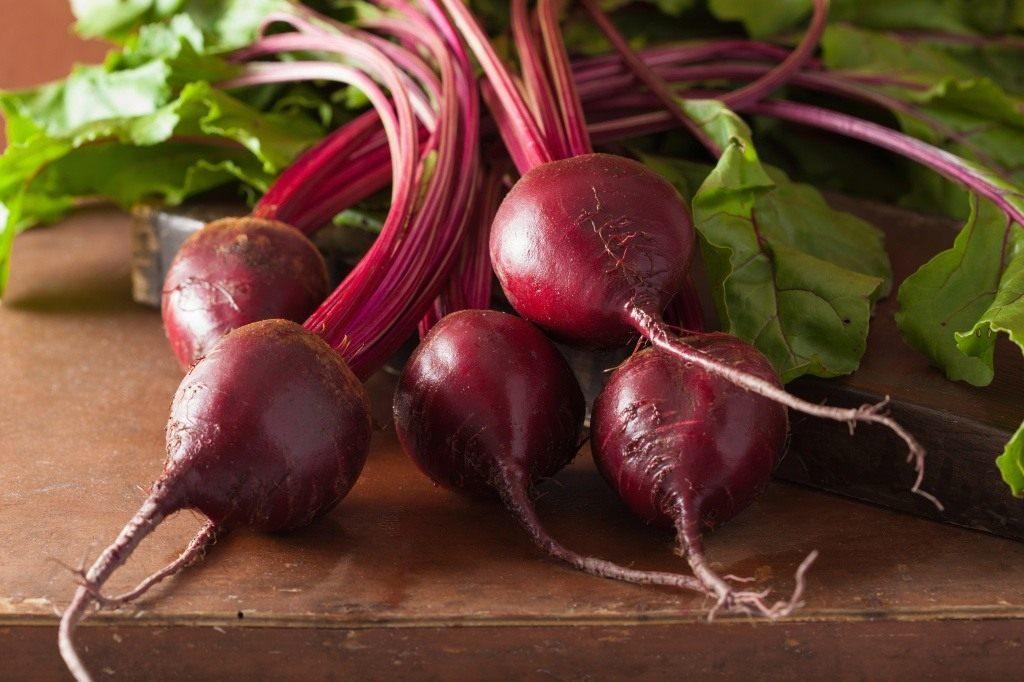 Красная свёкла: полезные свойства для здоровья. Рецепты блюд из свёклы